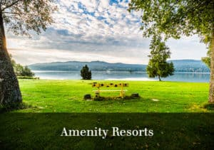 Amenity Resorts